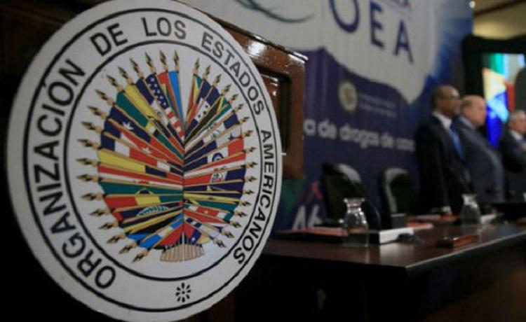 """Resultado de imagen para OEA no debe aprobar un documento que justifique"""""""